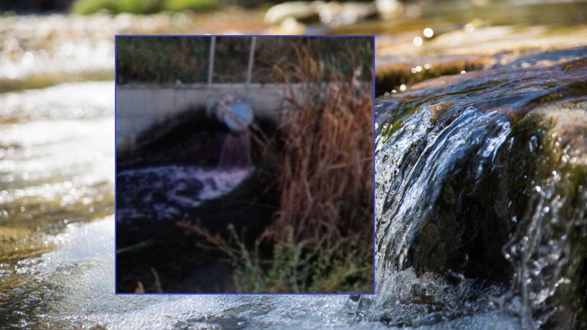 Снимка: Река Потока посиня от отпадни води на винарска изба