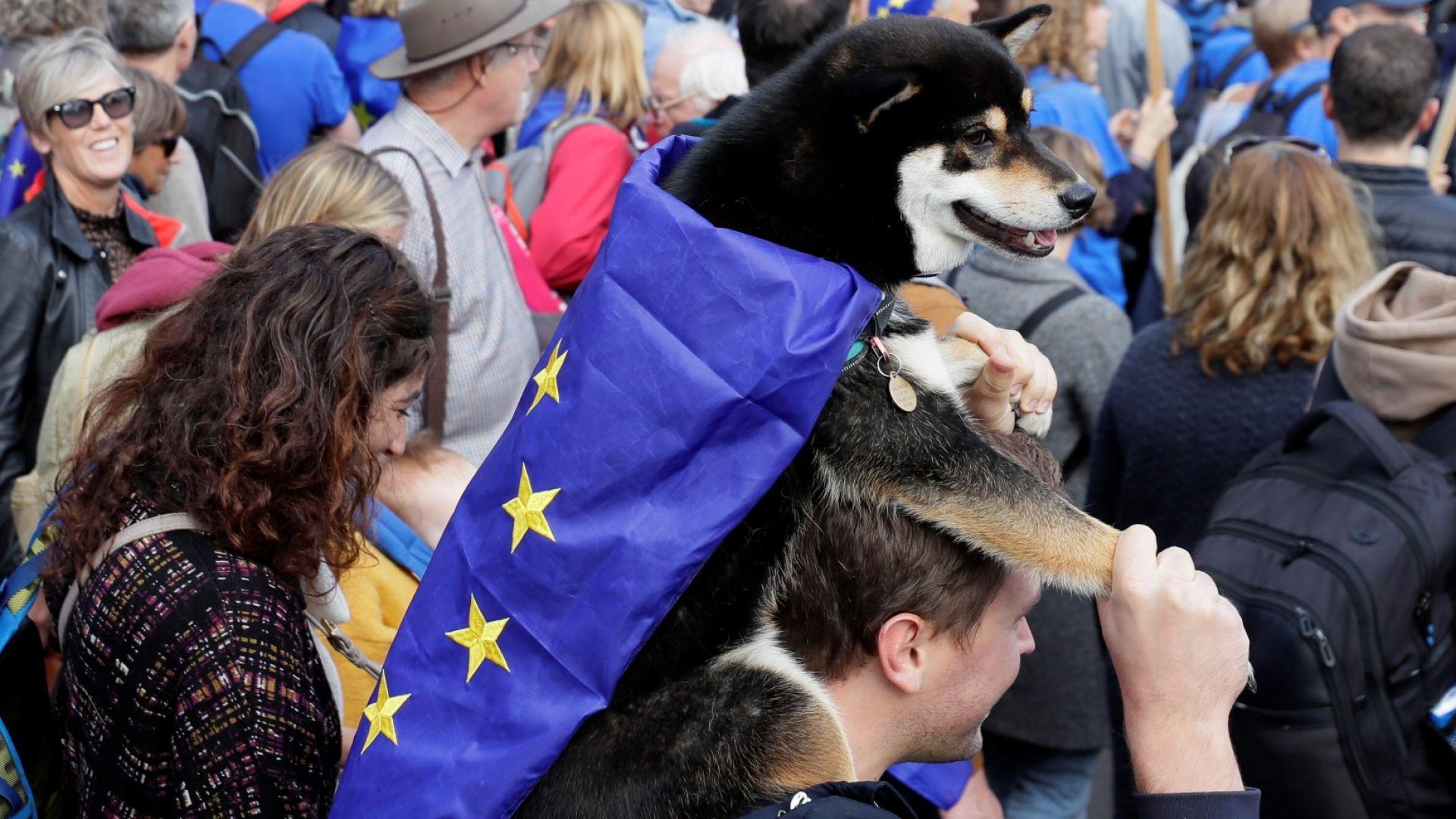 500 000 души от ЕС във Великобритания не са подали документи за статут