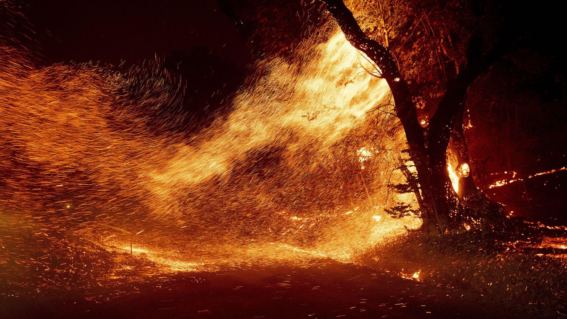 Голям горски пожар избухна в Северна Калифорния (снимки)
