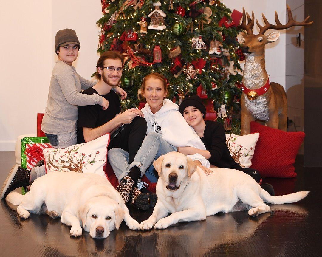 Селин Дион с тримата си синове и кучетата си