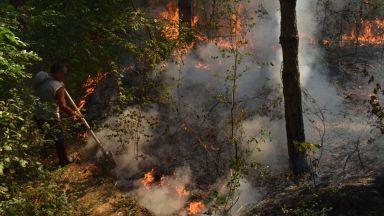 Голям пожар в Национален парк Рила