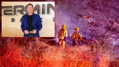 """Звезди се евакуират заради пожарите в Калифорния. Отложиха премиерата на """"Терминатор"""""""