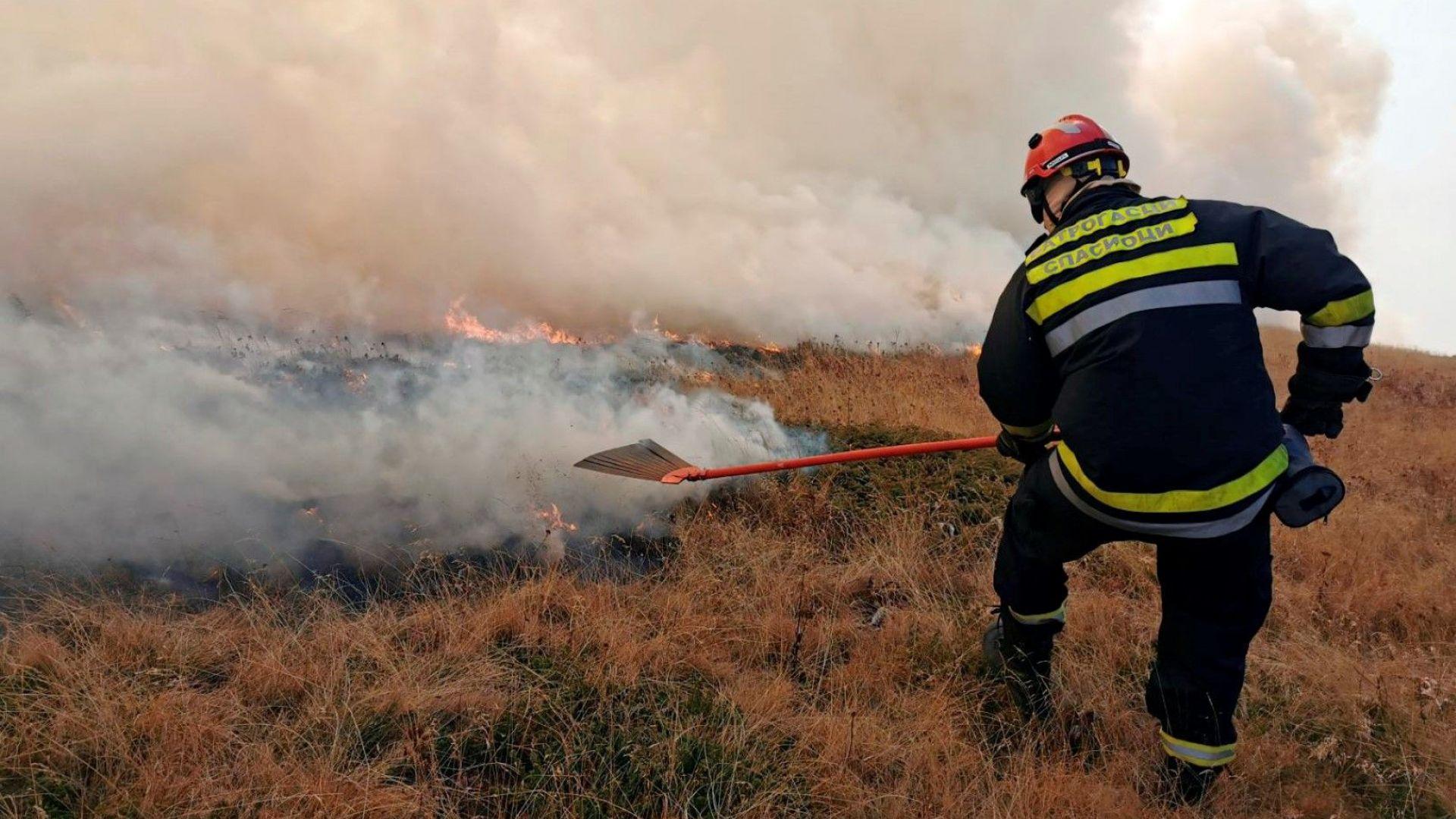 Въведоха извънредно положение в Сърбия заради пожара, който бушува и в Стара планина