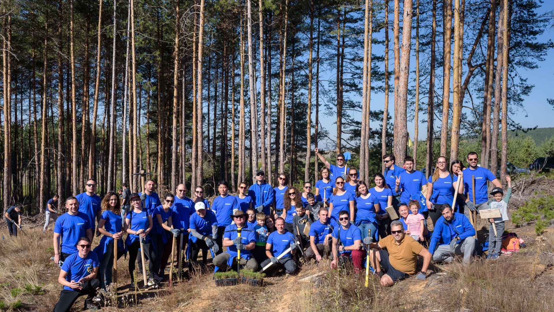 Samsung осигурява 50 000 медоносни дръвчета за опазване на пчелите в България
