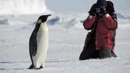 Огромен ръст на китайските туристи в Антарктика