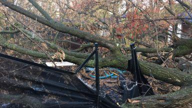 """Бурята """"Амели"""" взе жертва и във Франция, десетки хиляди без ток, предстоят порои и на Балканите"""