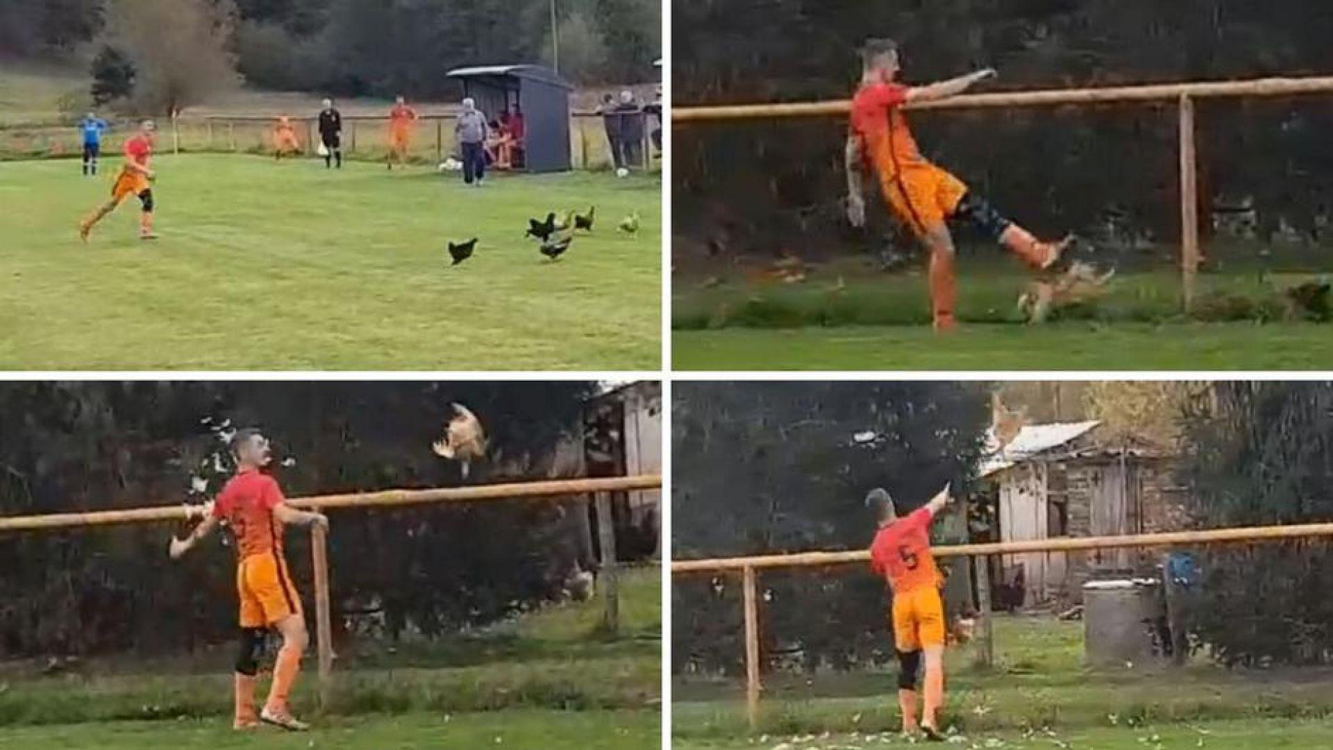 Хърватин побесня, уби кокошка и получи червен картон (видео)