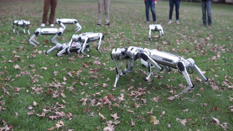 Американски роботи си играят с есенните листа