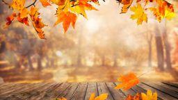 Есента продължава с променливо време, слаби превалявания и мъгли