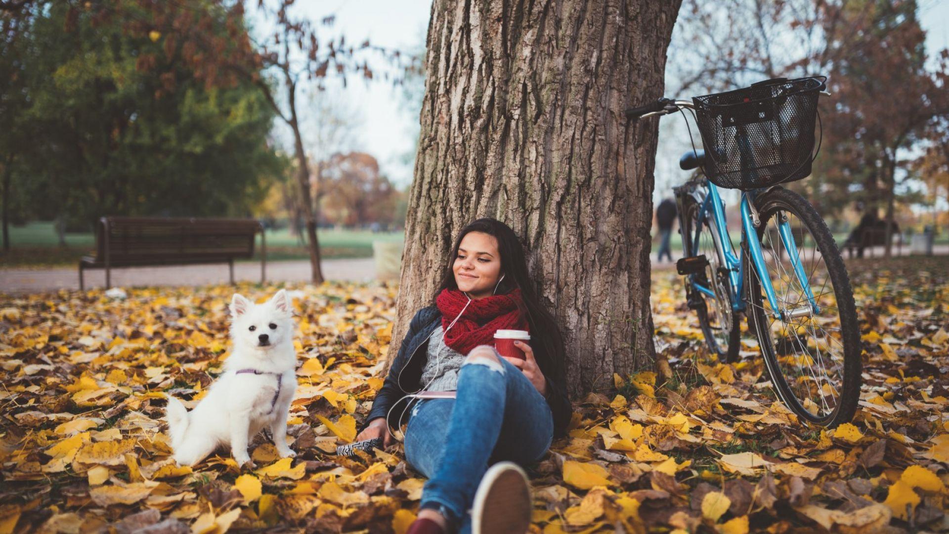 Последни есенни дни, а след тях - студ и зима