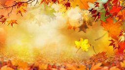 Топла есен и още повече слънце в следващите дни