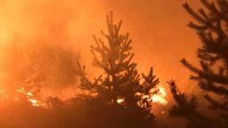 Голям пожар над Трявна вдигна на крак огнеборци и доброволци (снимки)