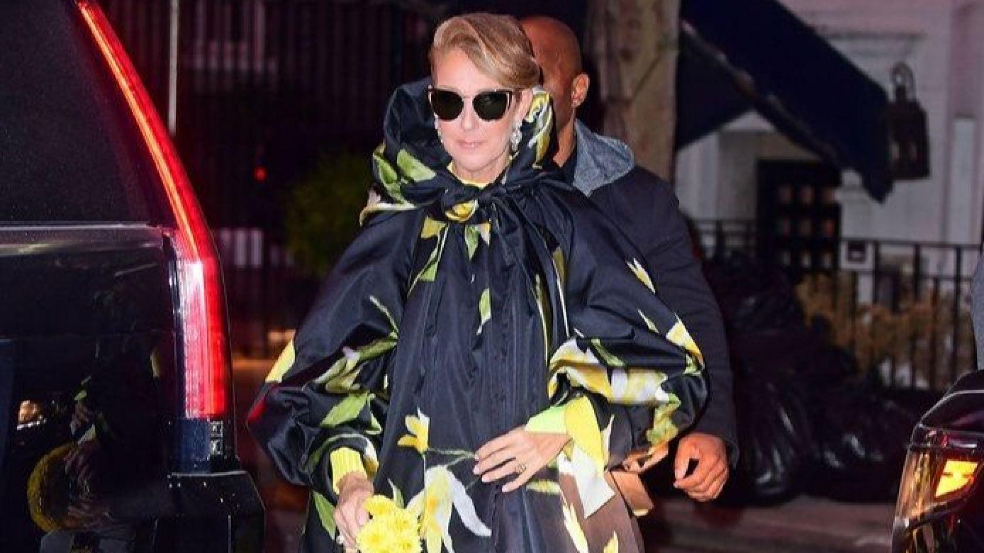 Селин Дион с палто, голямо колкото апартамент