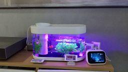 Xiaomi представи умен аквариум