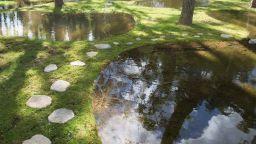 Нереална водна градина в Япония - ода за природата и покана за медитация