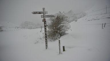 Сняг и студ сковаха част от Западна Европа (видео)