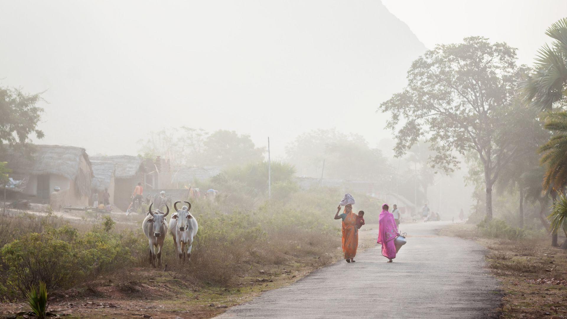 Замърсяването на въздуха увеличава с 15 процента  смъртността от Ковид-19