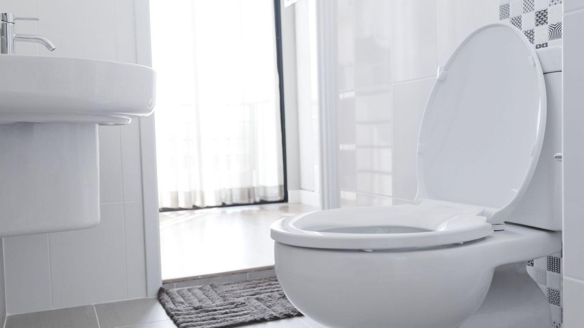 Отбелязваме Световния ден на тоалетната