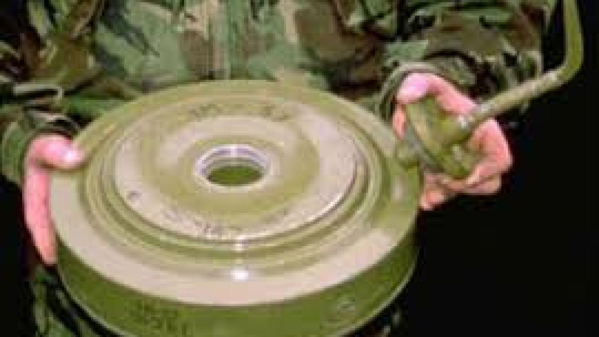 Обезвредиха противотанкова мина, открита на метър от брега