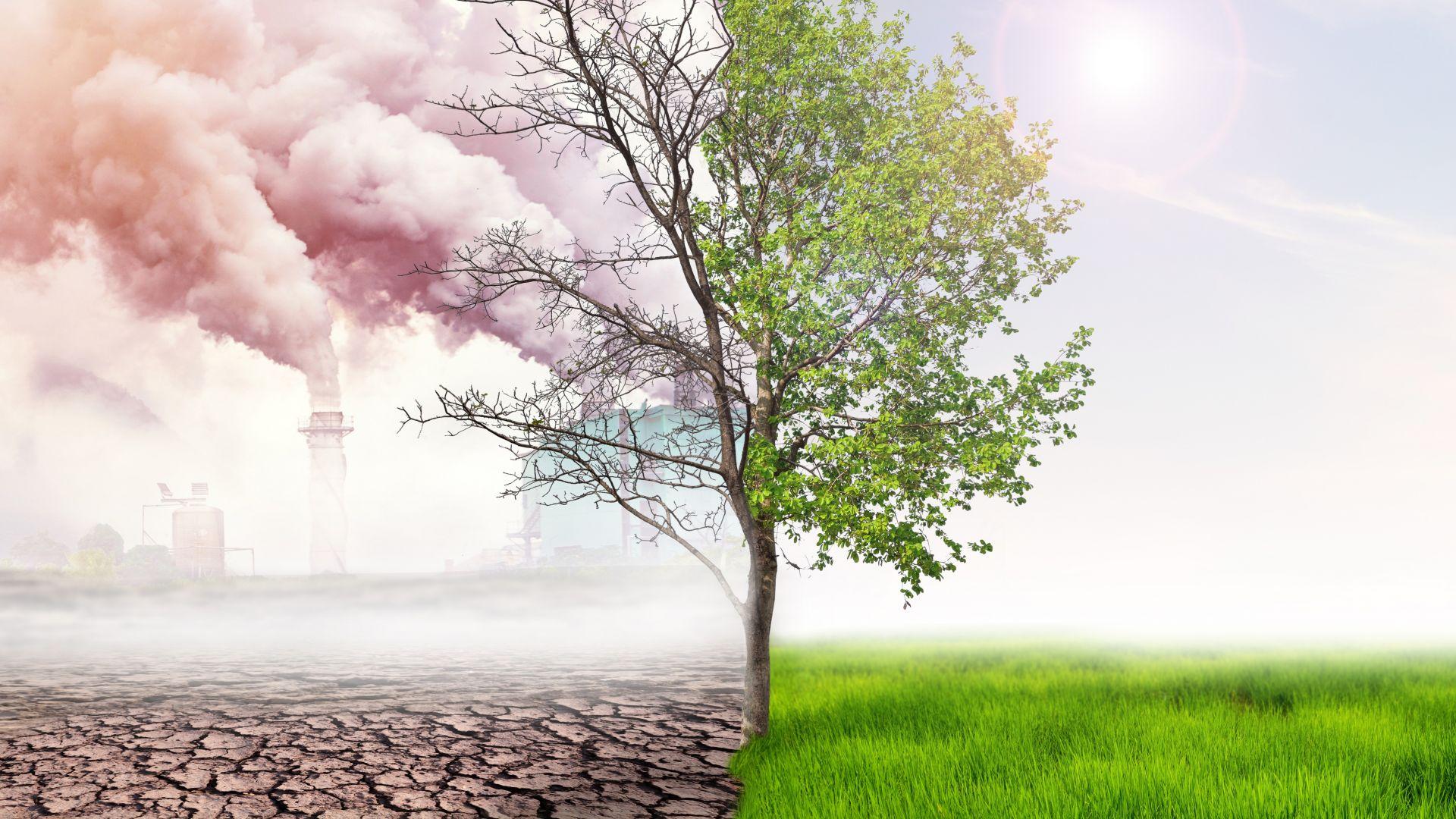 Катастрофа очаква селското стопанство и рибарството, ако светът не намали парниковите газове