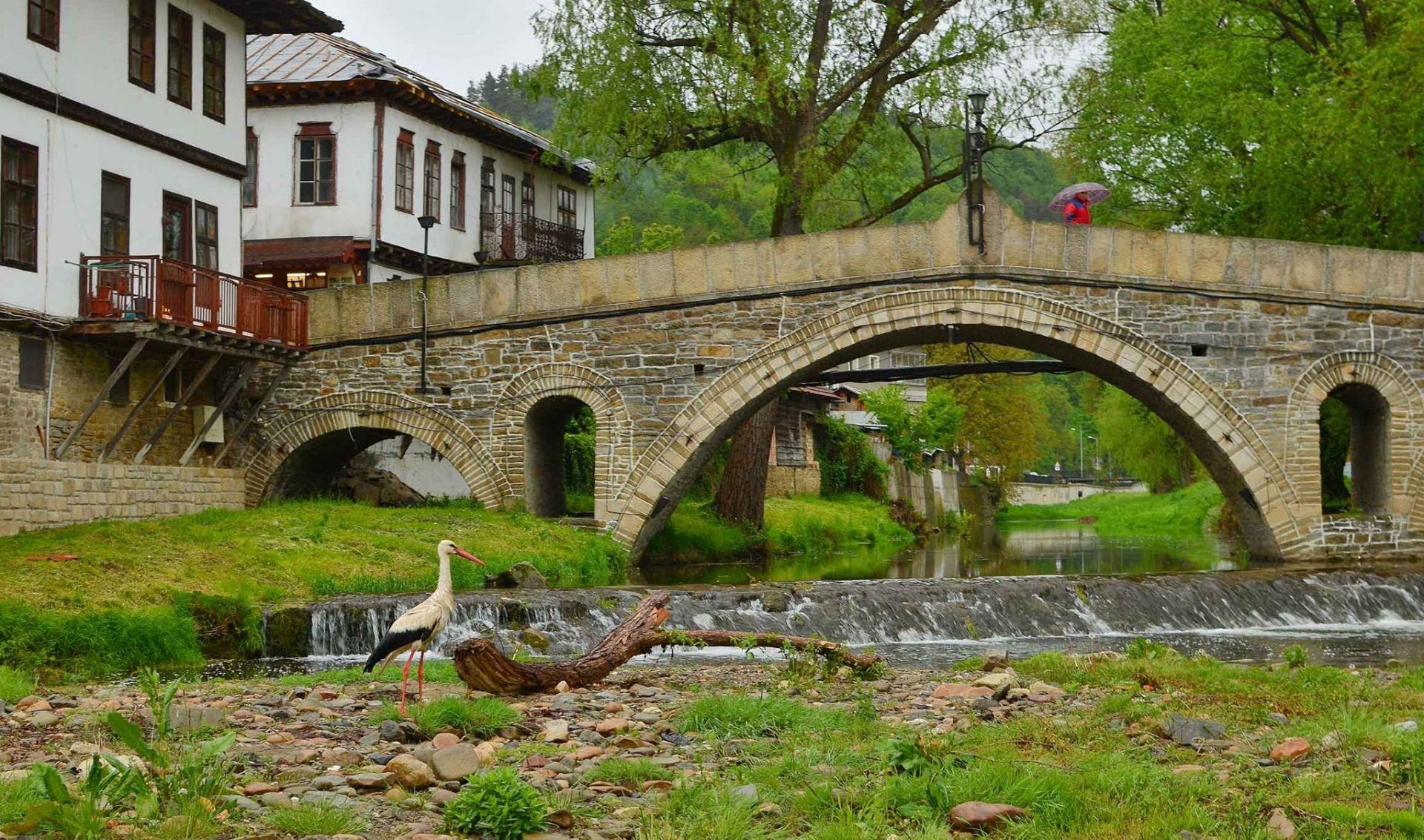 Гърбавият мост