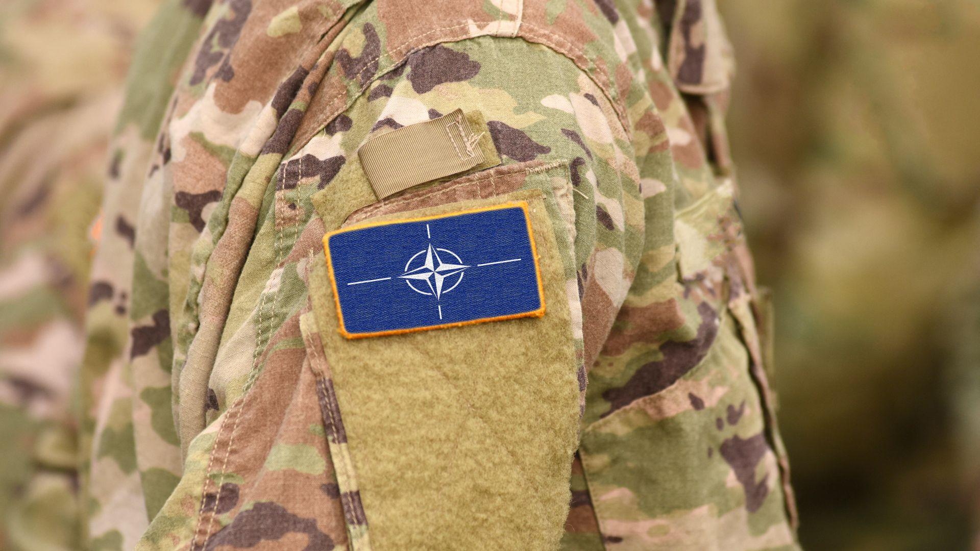 """Мозъчна смърт на 70 години? НАТО се готви да потърси помощ от """"учените глави"""""""