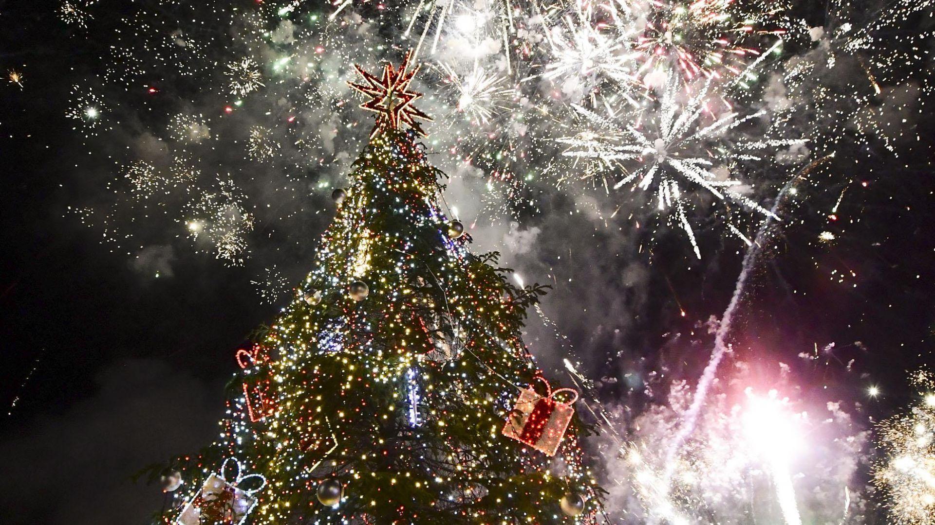 Грейнаха светлините на коледната елха в София (снимки+видео)