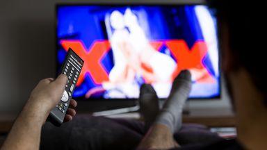 Порно сайт организира виртуални посещения в домовете на звездите си