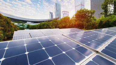 ВЕИ са произвели 10% от световната електроенергия през първите 6 месеца на 2020