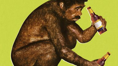 Британски учени: Алкохолът помогнал на маймуната да стане човек