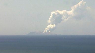 Туристи са пострадали при изригването на вулкан  на новозеландски остров