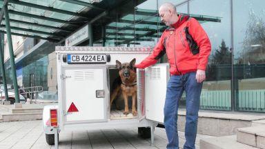 """Кампанията """"Избери, за да помогнеш"""" осигури ремаркета за кучета на БЧК"""