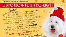 Звездни български музиканти с благотворителен концерт в Пловдив