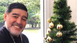 Марадона украси елхата