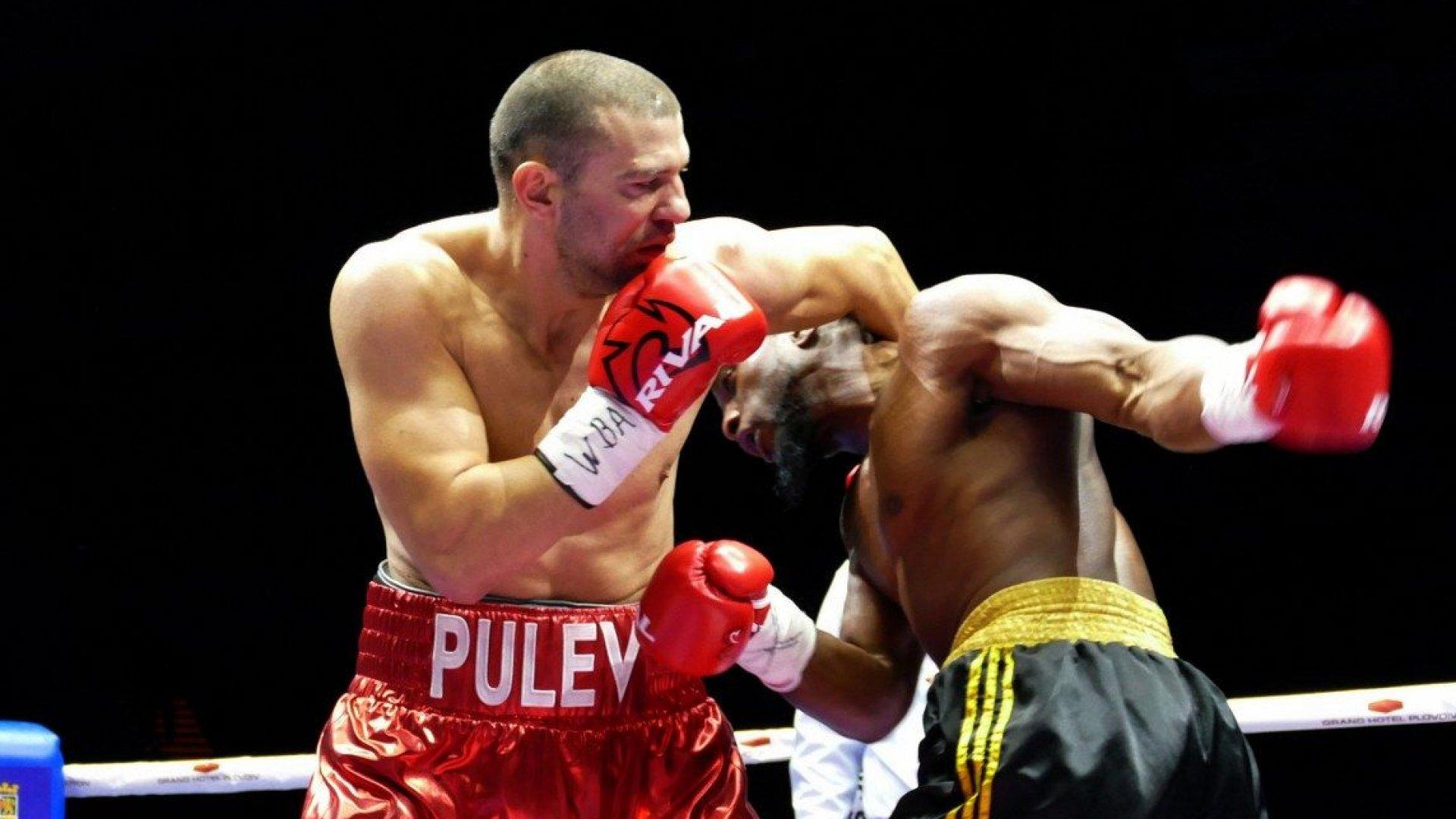 Тервел Пулев обяви, че ще се бие в Танзания