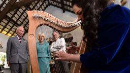 Ирландската арфа влезе в Списъка на нематериалното културно наследство на ЮНЕСКО
