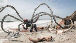 Фотограф представя по артистичен начин екологичните проблеми