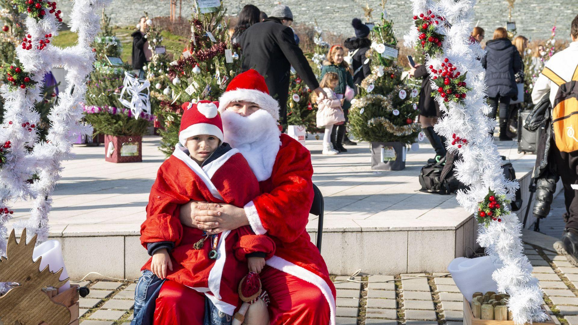 Из желанията към Дядо Коледа: По-чист въздух, тротинетка, кукла, куче (истинско)