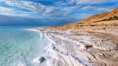 Кои организми могат да оцелеят в Мъртво море?