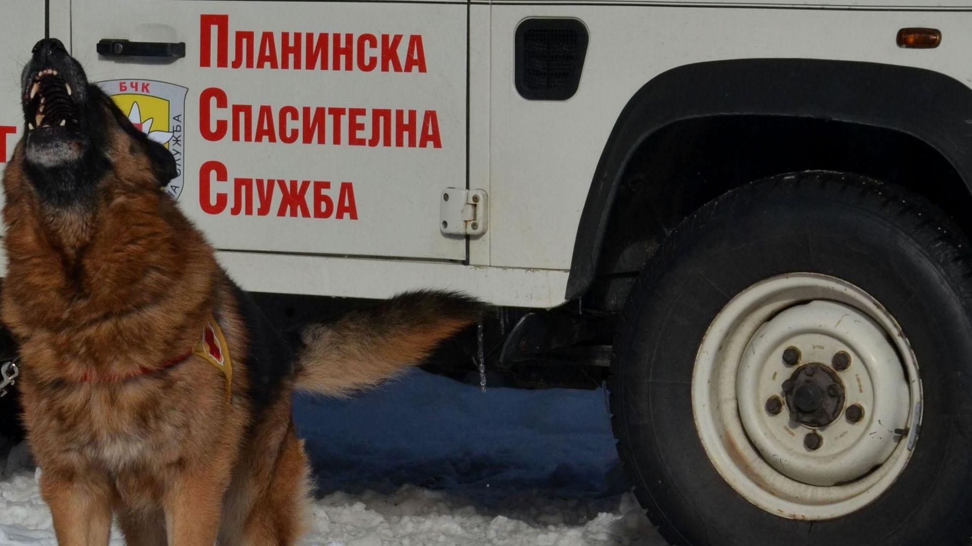 Спасители издирват избягал в Стара планина след скандал
