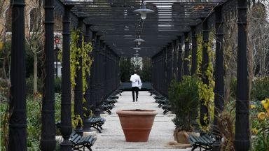 Кралските градини във Венеция оживяха след наводнението (галерия)