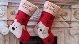 Най-оригиналните чорапи на Дядо Коледа