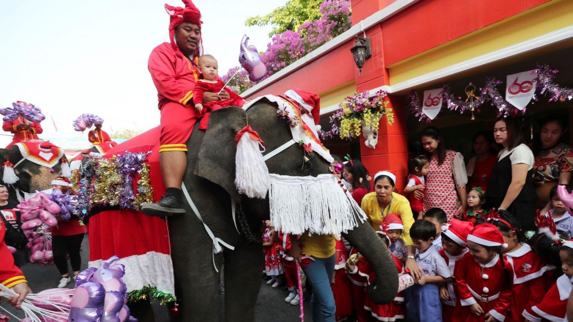 Слонове, облечени като Дядо Коледа, раздават подаръци на ученици в Тайланд