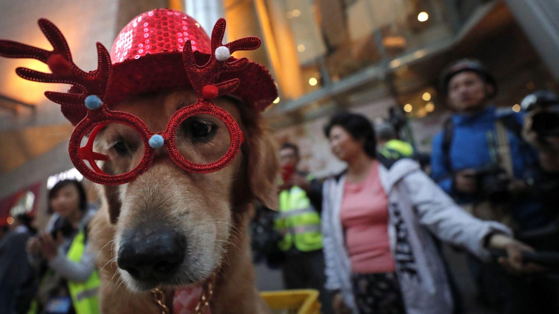 Протестите в Хонконг продължават с пълна сила и по Коледа