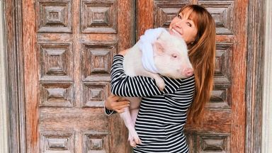 Джейн Сиймор гушна прасенцето Пиле