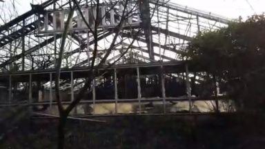 Летящи фенери предизвикали пожара в зоопарка край Дюселдорф (видео)