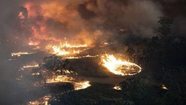 Димът от пожарите в Австралия достигна столицата на Чили (видео)