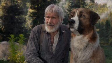 """""""Дисни"""" завладява филмовия хоризонт през 2020 г."""