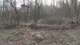 """Изсичане на гора над бившия къмпинг """"Черноморец"""" заплашва да активизира свлачище"""