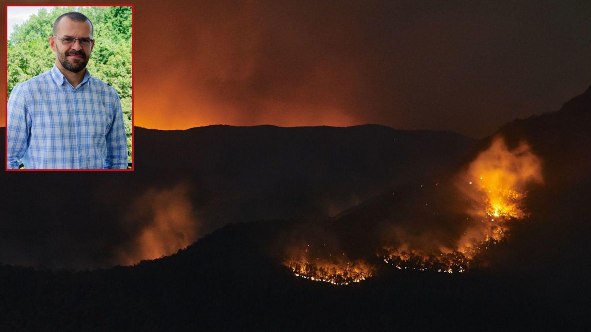 Пожарите в Австралия през последния месец предизвикаха лавина от медийни
